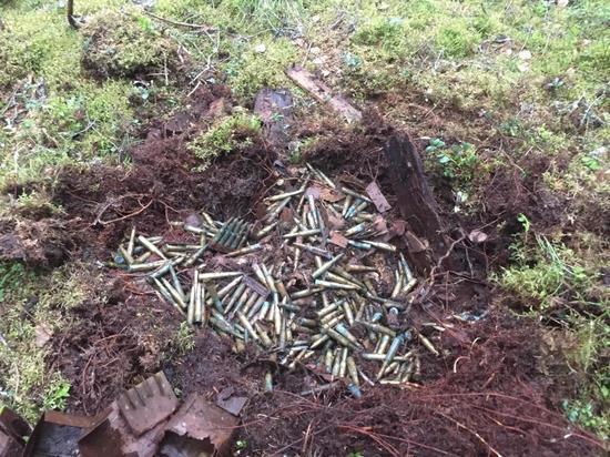 Более 800 спрятанных боеприпасов обнаружили в карельском поселке