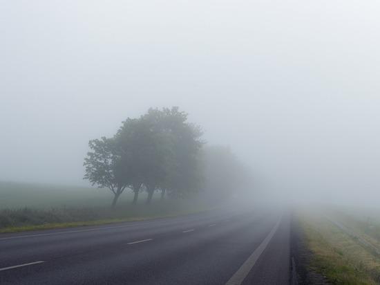 Сильный туман ожидается в Удмуртии 22 сентября