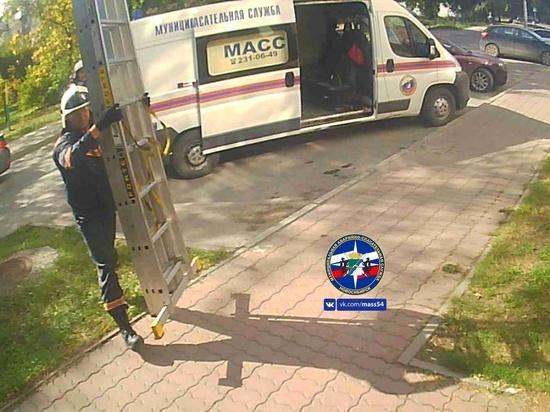 В Новосибирске спасатели влезли в окно, чтобы достать ребенка из батареи