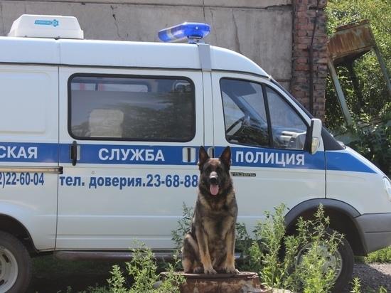 Собака помогла саяногорским полицейским обнаружить краденые деньги и найти преступницу