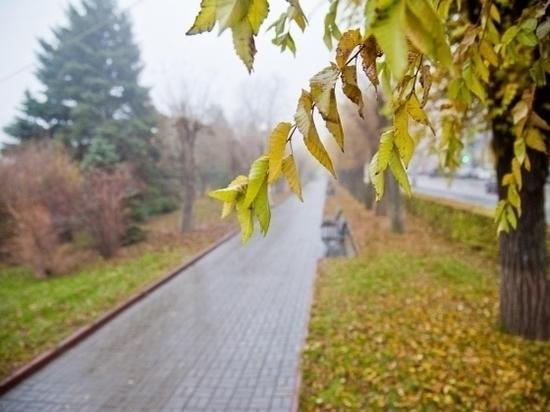 В Волгоградскую область пришли ночные заморозки