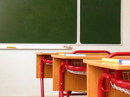 Ученик собирался готовился к массовому убийству, сообщило МВД