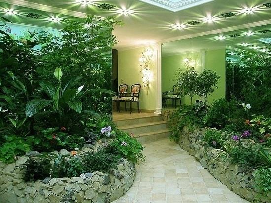 Фито дизайн поможет создать из офиса цветущий сад
