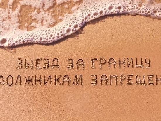 Сибирячку, не выплатившую кредит, задержали в Санкт-Петербурге