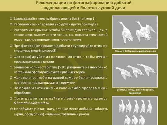 Фотоматериалы охотников Ставрополья помогут в научных исследованиях