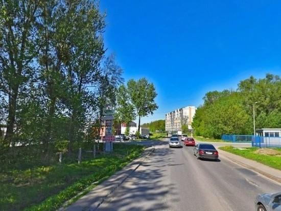 В Калининграде при ремонте дороги вырубят более 200 деревьев