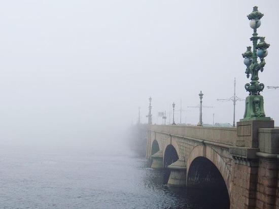 Ночной туман в Петербурге напугал и заворожил горожан
