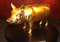 НАШ БАДЕН: Штутгартский музей свинок