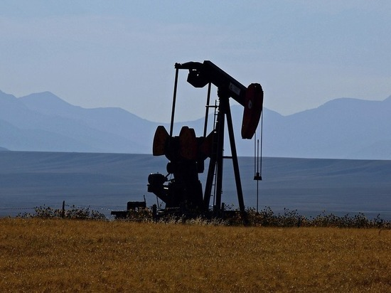 В 2020 году нефтяные цены претерпят катаклизмы: чего ждать России