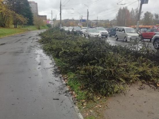 На улице Лермонтова в Иркутске срубили деревья, чтобы расширить трассу