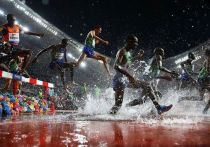 ЧМ в Катаре – катастрофа: спортсмены мучаются от жары, трибуны пустые