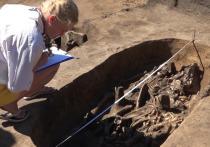 Алтайские ученые изучают ДНК древних людей