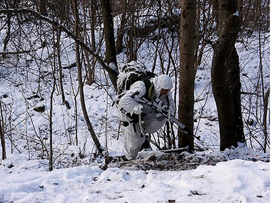 Эксперт объяснил сообщения о появлении русского спецназа на Шпицбергене
