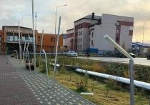 В Салехарде ищут устроивших погром на аллее вандалов