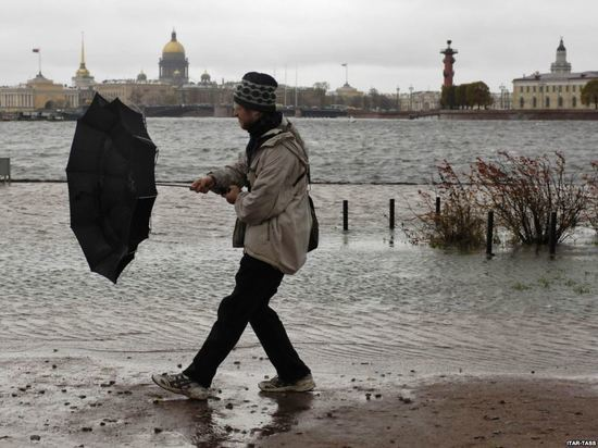 МЧС предупредил о надвигающейся на Петербург буре