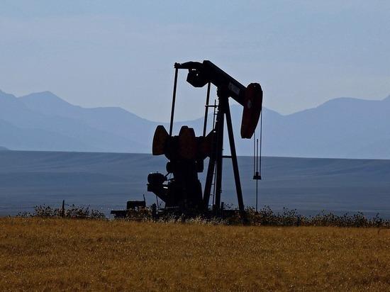 Стремительно падающие цены на нефть тянут за собой российский рубль