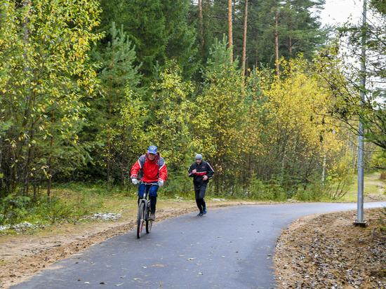 Пермяков ждет новый лесной маршрут