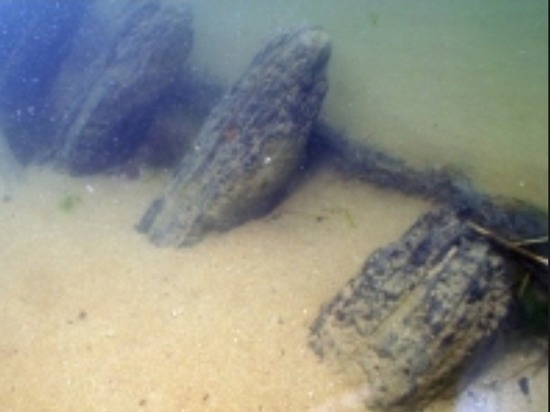 Тульские дайверы нашли на дне Волги ладью IX века
