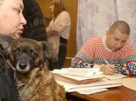 Россиянам при этом предложат заполнять анкеты дистанционно
