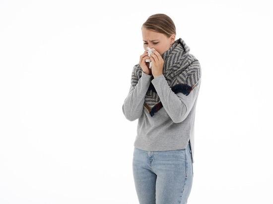 Как волгоградцам осенью избавиться от насморка быстро и надежно