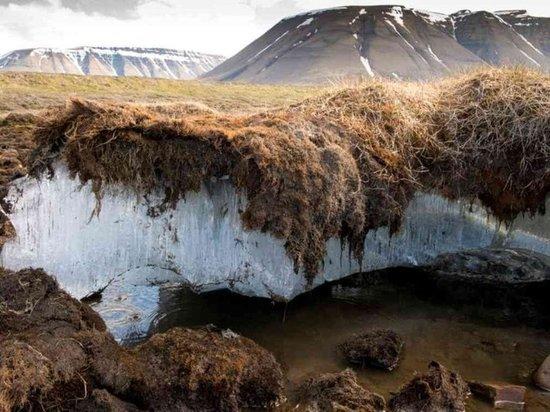 Вечная мерзлота начала таять под Читой из-за изменения климата