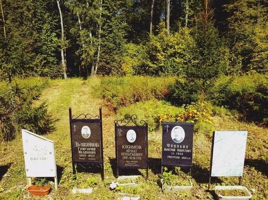 5 октября в Тесницкий лес Тулы приглашают на субботник