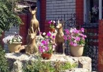 Барнаульцы будут судиться из-за трех собак