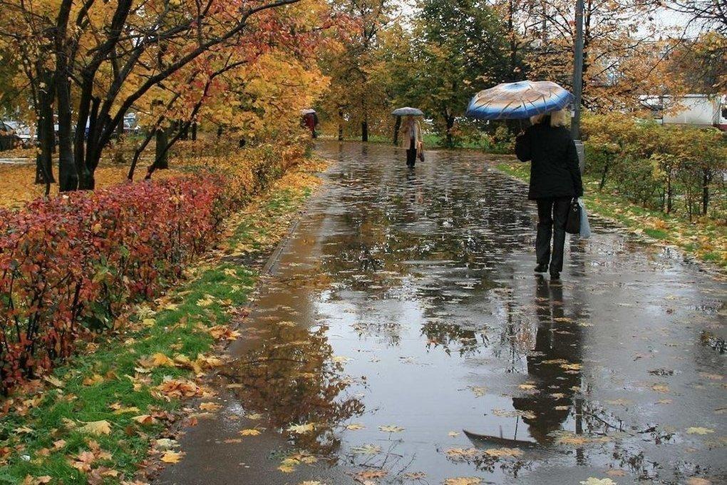 суевчанин картинка погода дождливая начать максимально аккуратно