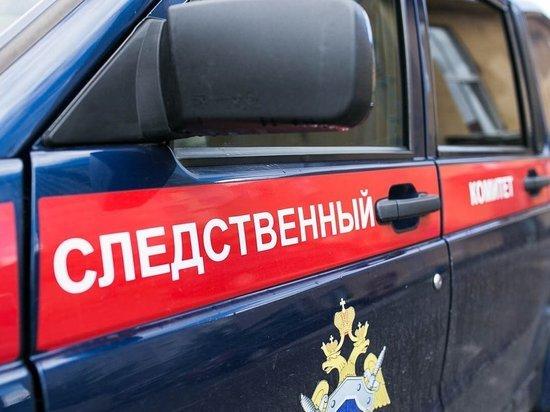 Помощник лесничего в Тверской области совершила служебный подлог