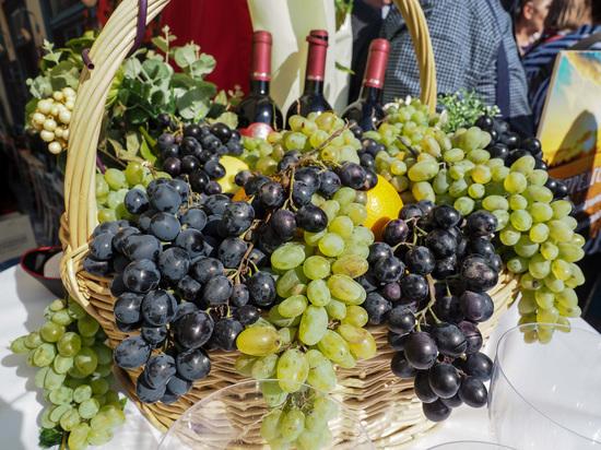 Форум молодого вина собрал виноделов со всего Ставрополья в Кисловодске