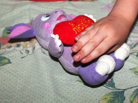 Программа Вологодчины по развитию работы с детьми-инвалидами получила грантовую поддержку