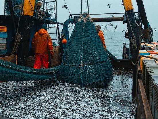 Инвестор с Кубани намерен построить в Дагестане новый рыбоперерабатывающий завод