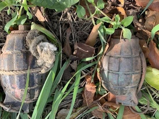 Две гранаты 1915 года обнаружили в Шелеховском районе