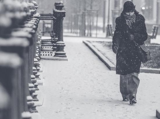 МЧС предупредило о снегопаде и гололедице в Петербурге