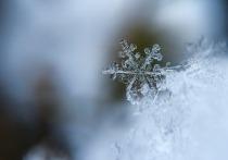 В Лабытнанги пришла зима