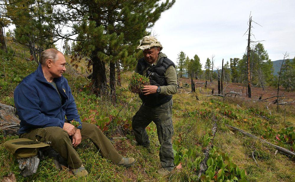 День рождения Путина в фотографиях: тайга, грибы и Шойгу