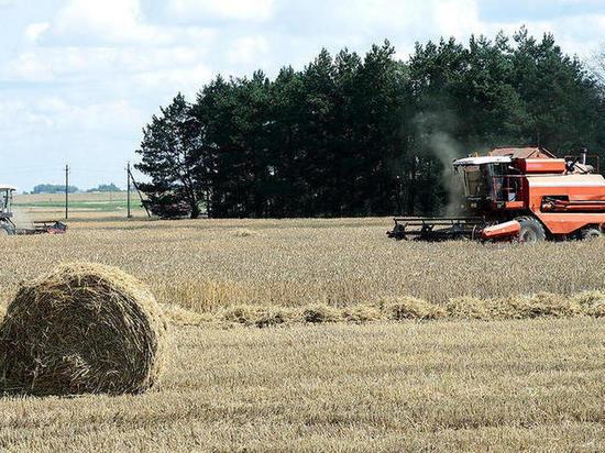 Калужский филиал РСХБ на 20% увеличил кредитование сезонных работ для малого бизнеса