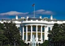 Вашингтон не стал выступать против вторжения Анкары на северо-восток Сирии, сообщают зарубежные СМИ