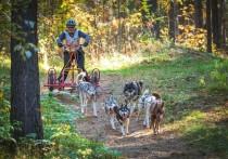 Соревнования прошли 6 октября в городе Бердске Новосибирской области и собрали более сотни спортсменов из разных регионов нашей страны