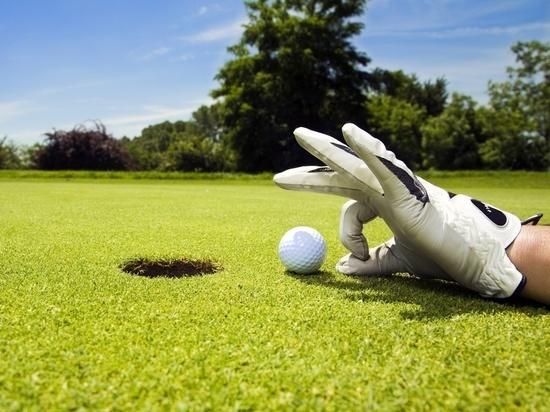 Ученые СФУ изучили влияние гольфа на физподготовку и интеллект