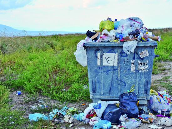 Политолог об экологии и потреблении
