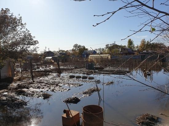 Пострадавшие от паводка в Хабаровске начинают восстанавливать хозяйства