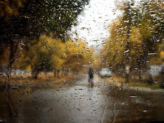 Синоптики прогнозируют теплую и дождливую погоду в Воронеже