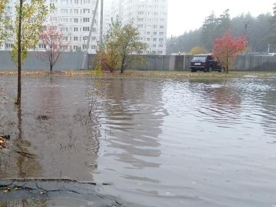Дожди, косые дожди: в Воронеже назрела необходимость модернизации ливневых сетей