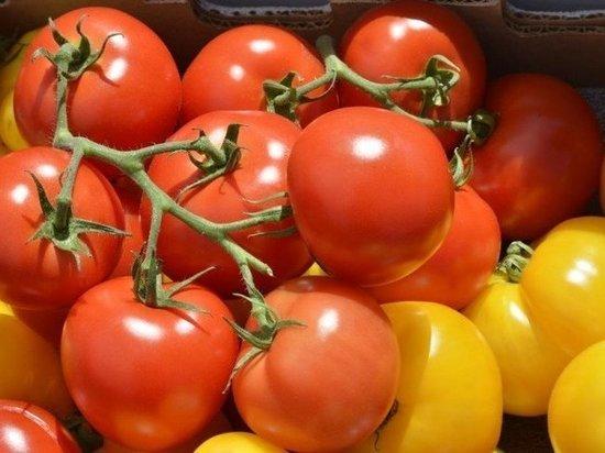 Ученые рассказали о пользе томатов при мужском бесплодии