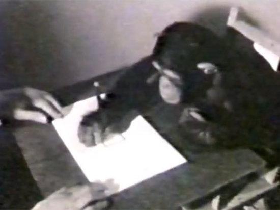 Картины, написанные шимпанзе, продадут за тысячи долларов