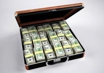 Источник иностранного финансирования ФБК назовут через три дня