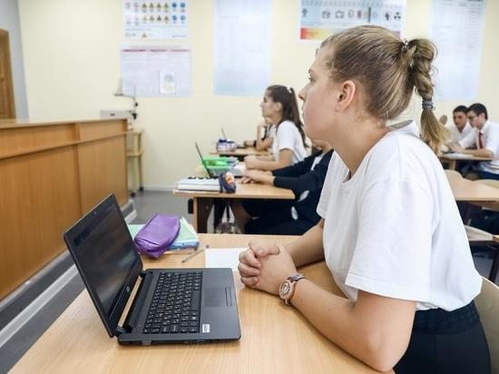 Педагог объяснила, что значит обучение в «перевернутом классе»