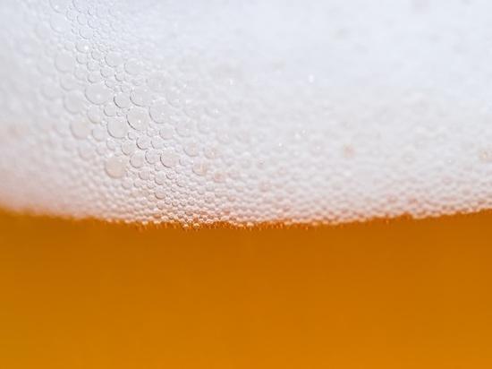 С пивом потянет: что думают алтайские производители крафтового пива о новом законе