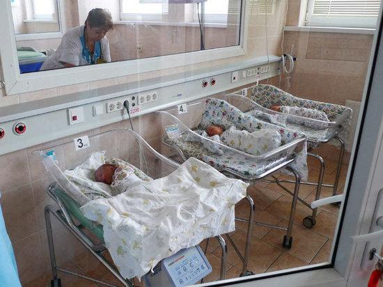 В Москве в 2019 году родились 26 Хабибов и 34 Добрыни